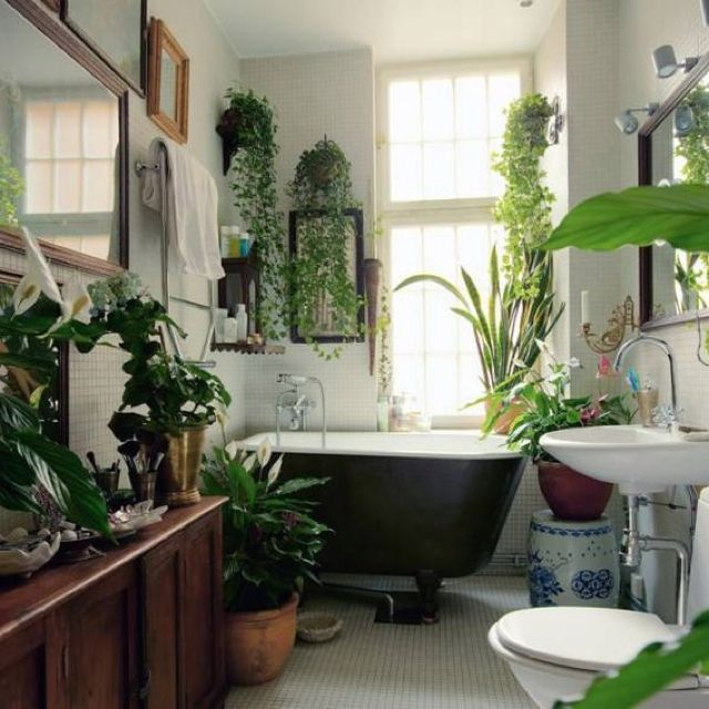 Hanging plants in bathroom decor deco salle de bain salle de bain et salle de bain tropicale - Salle de bain tropicale ...