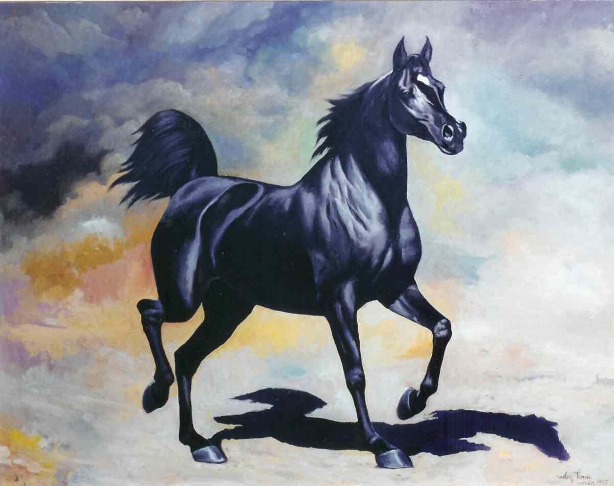 Amazing Wallpaper Horse Watercolor - d1e899a68d6fe6f1237ba01ad210067d  Perfect Image Reference_236013.jpg