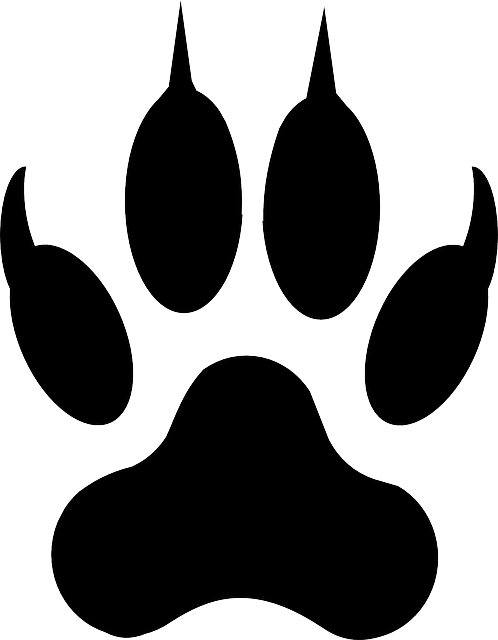 Free Image On Pixabay Wolf Footprint Lion Tiger Paw Tattoo
