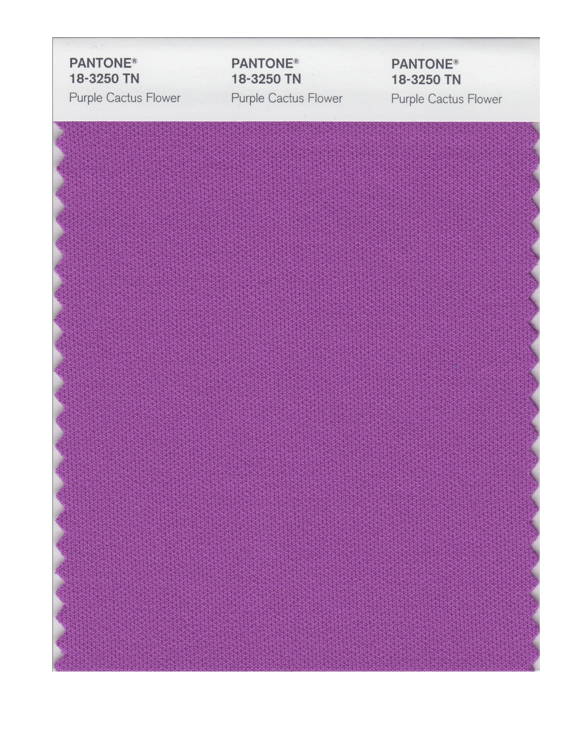 Pantone 18 3250 Nylon Brights Color Swatch Card Purple Cactus Flower