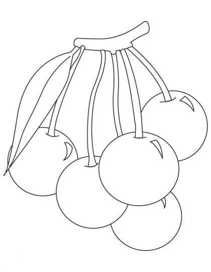 Bunch Of Cherries Coloring Pages Download Free Bunch Of Cherries
