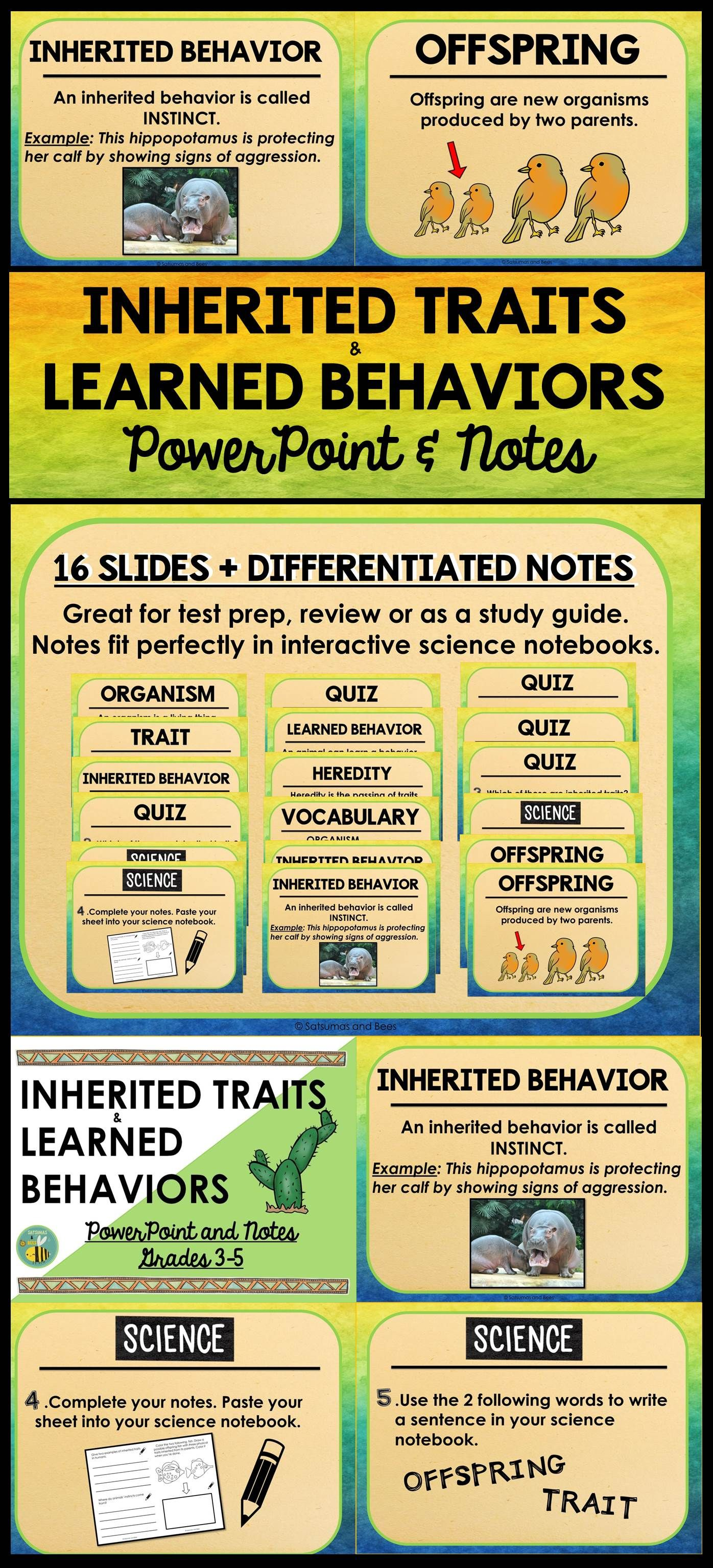 Inherited Traits And Learned Behaviors Powerpoint And Notes Learned Behaviors Inherited Traits Inherited Traits Anchor Chart