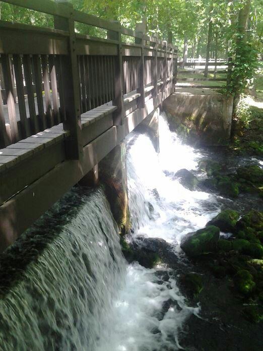 Meremec Springs, MO