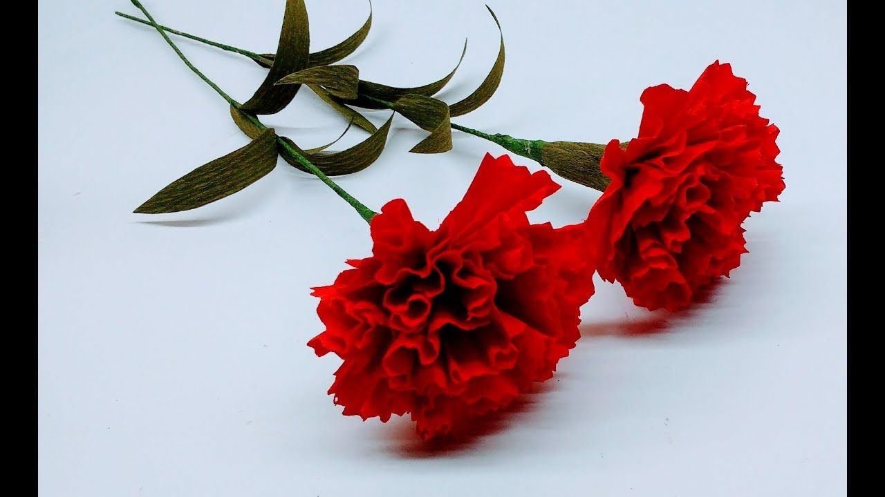 How to make crepe paper flowers red carnations flower 236 how to make crepe paper flowers red carnations flower 236 mightylinksfo