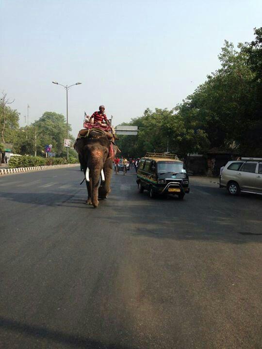 Morning traffic in Delhi