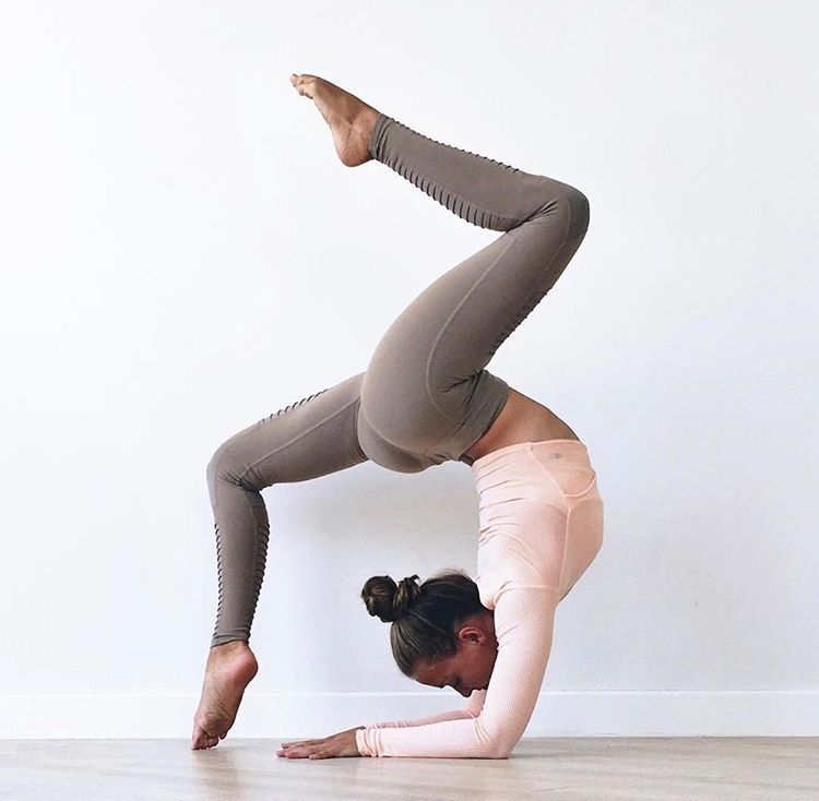 forearm stand pincha scorpion/wheel pose - one leg up and on leg down with