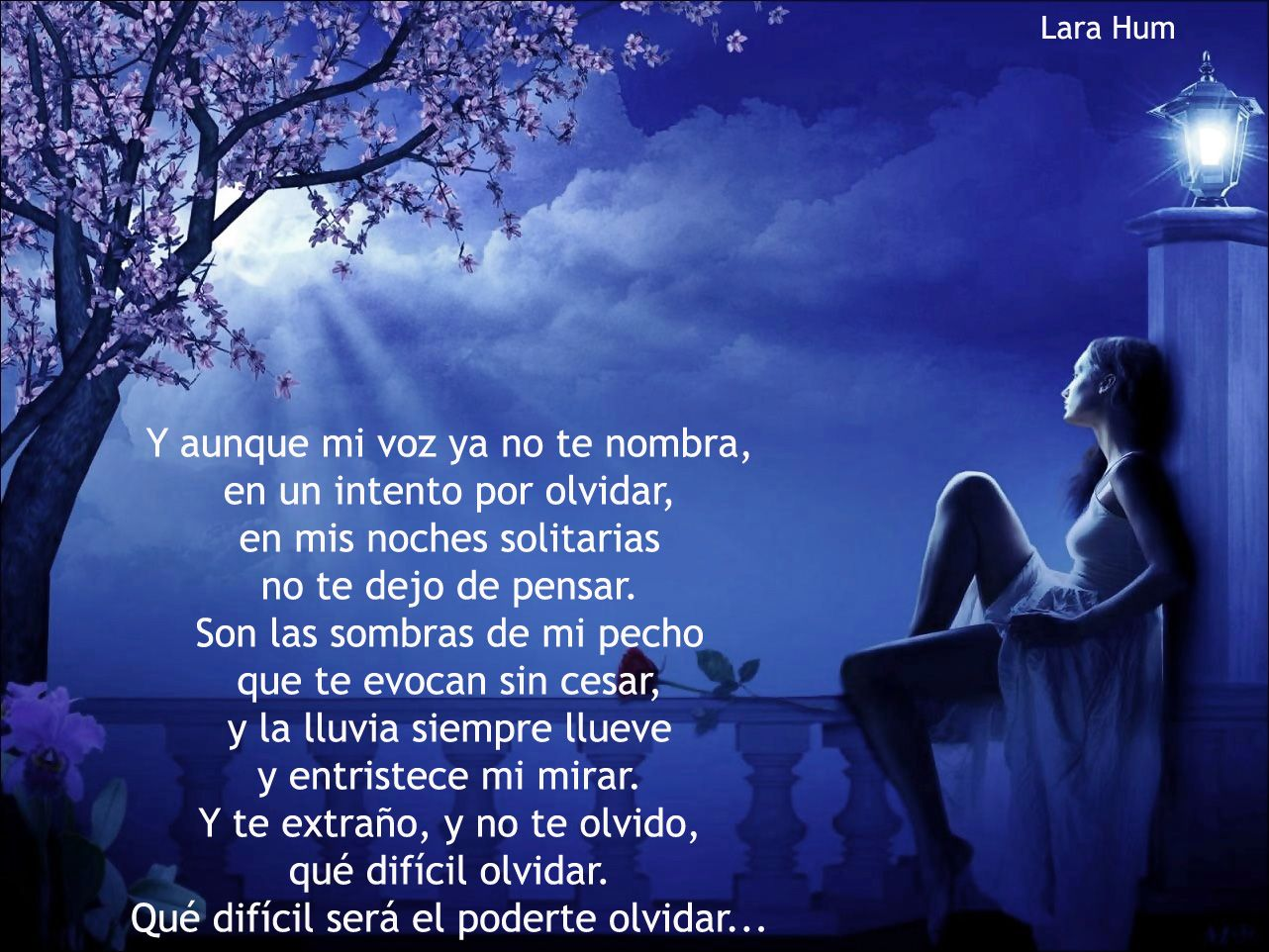 Lara Hum