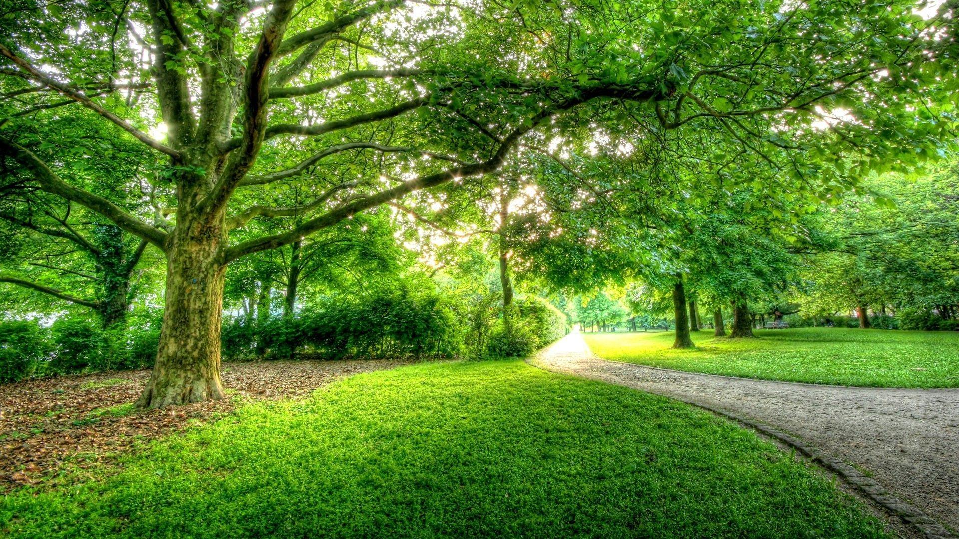 Beautiful Park In Berlin Hdr Hd Wallpaper 500726 Jpg 1920 1080