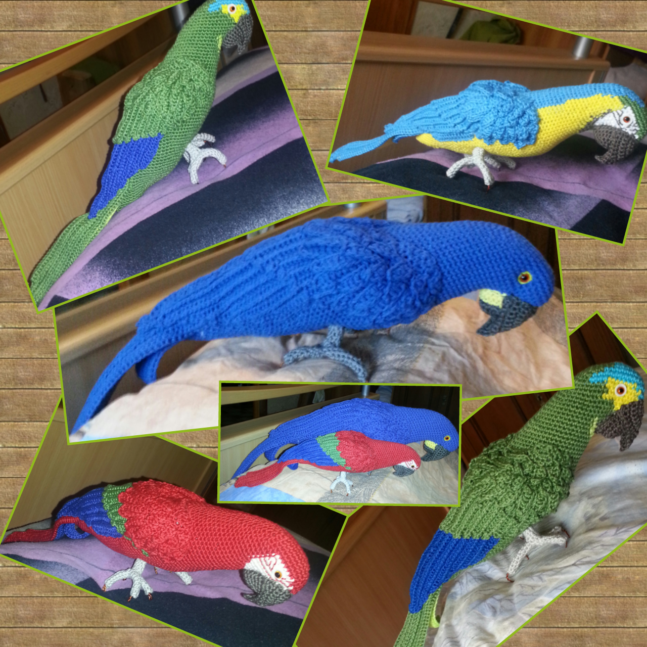 Amigurumi Blue-and-Yellow Macaw/Parrot pattern by CAROcreated design ...