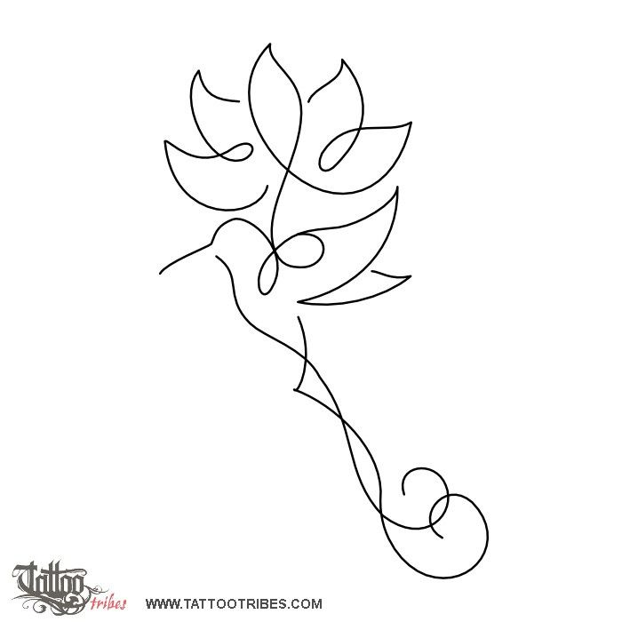 Lotus And Humming Bird Rebirth The Lotus Flower Symbolizes