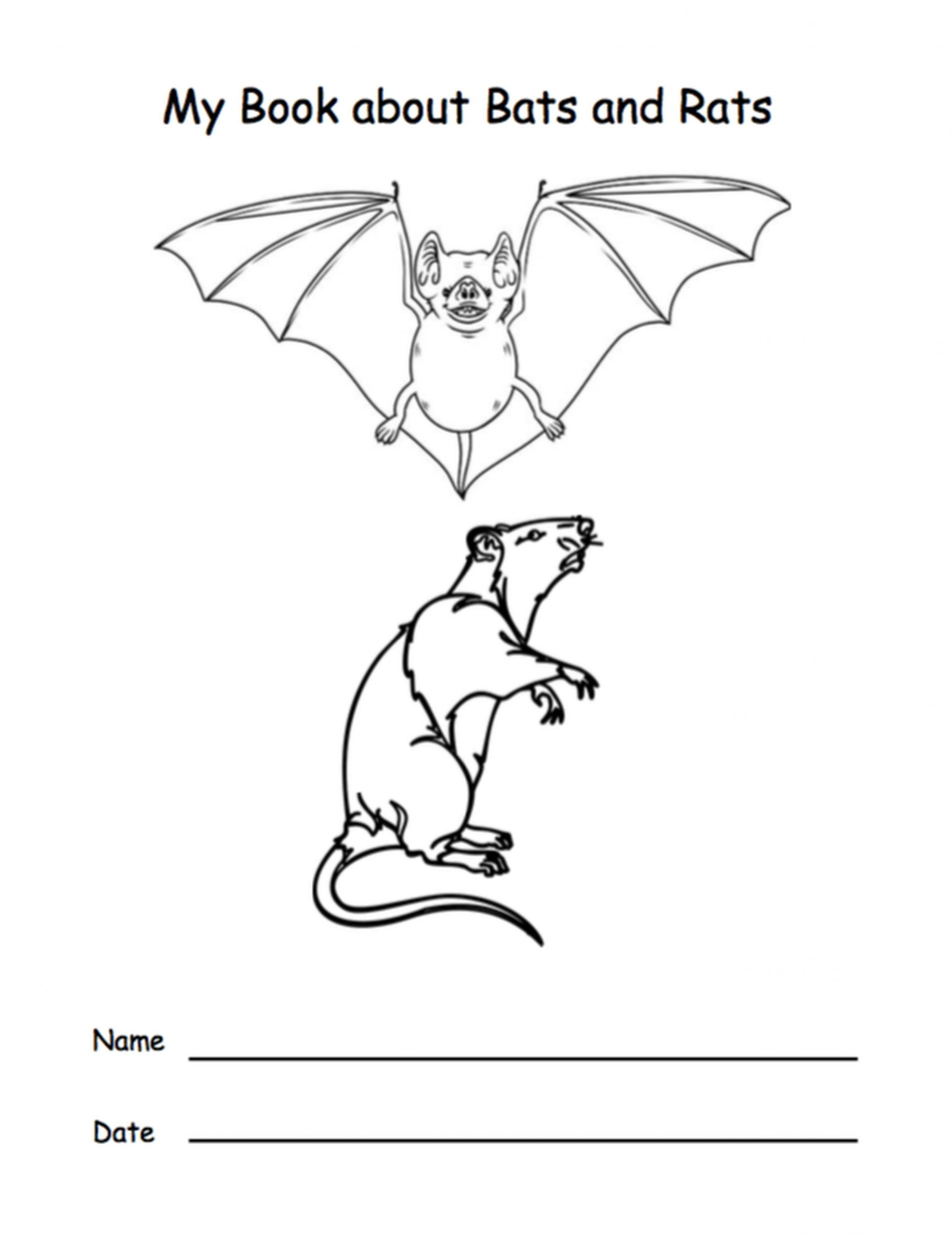 My Book About Bats And Rats Grades K 3 47 Pages