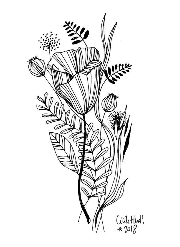 Tulipe les chosettes art tulipe dessin dessin fleur et image a dessiner - Coloriage fleur tulipe ...