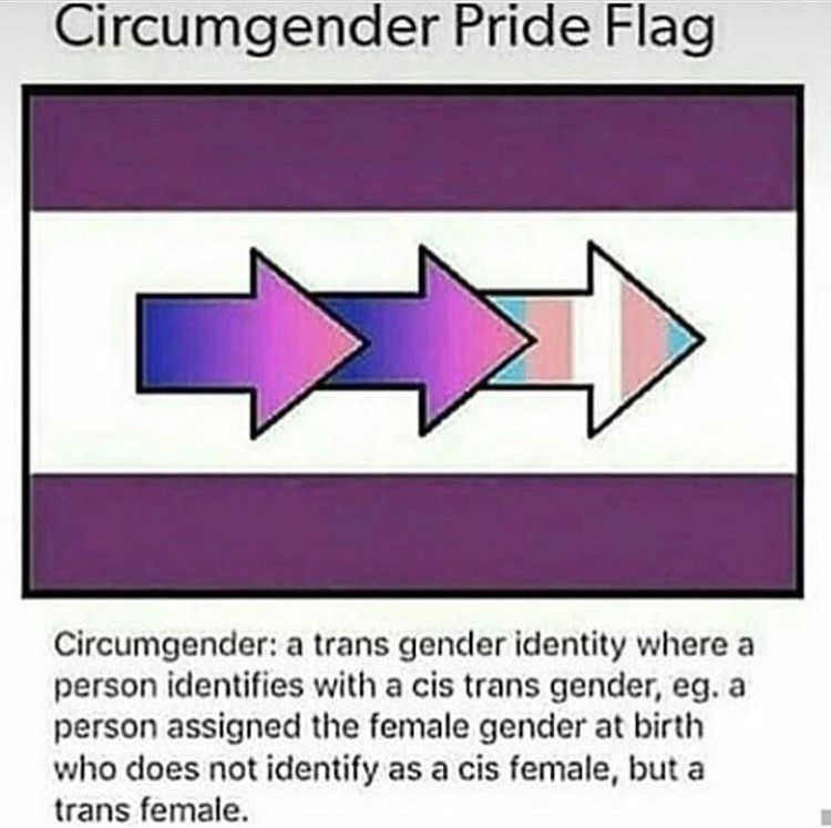 What No No Nonononononono Trans Is Not Part Of Youre Gender Its An Idetificy Its A Community I Am Male I Was Definition Of Humor Cringe How Are You Feeling