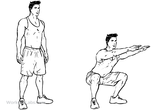 Image result for air squats