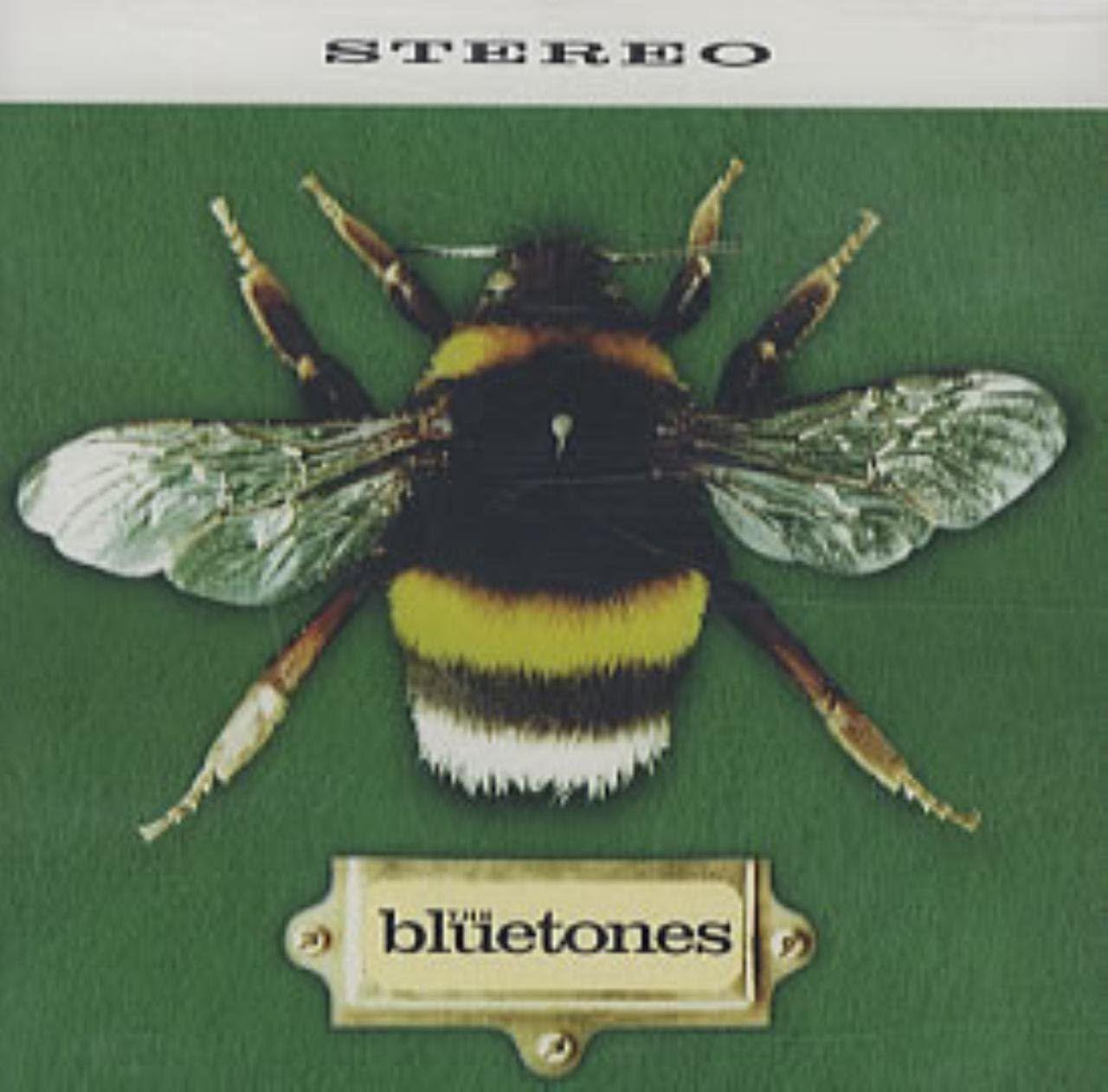 The Bluetones | Slight Return 솔루션을 찾을 수 없다고 발랄깜찍하게 노래하지 말란 말이얌 ㅠㅠ