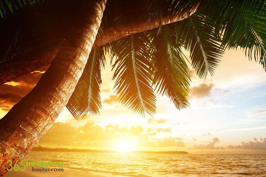 Amanecer en el caribe fondos de pantalla for Imagenes bonitas para fondo de pantalla
