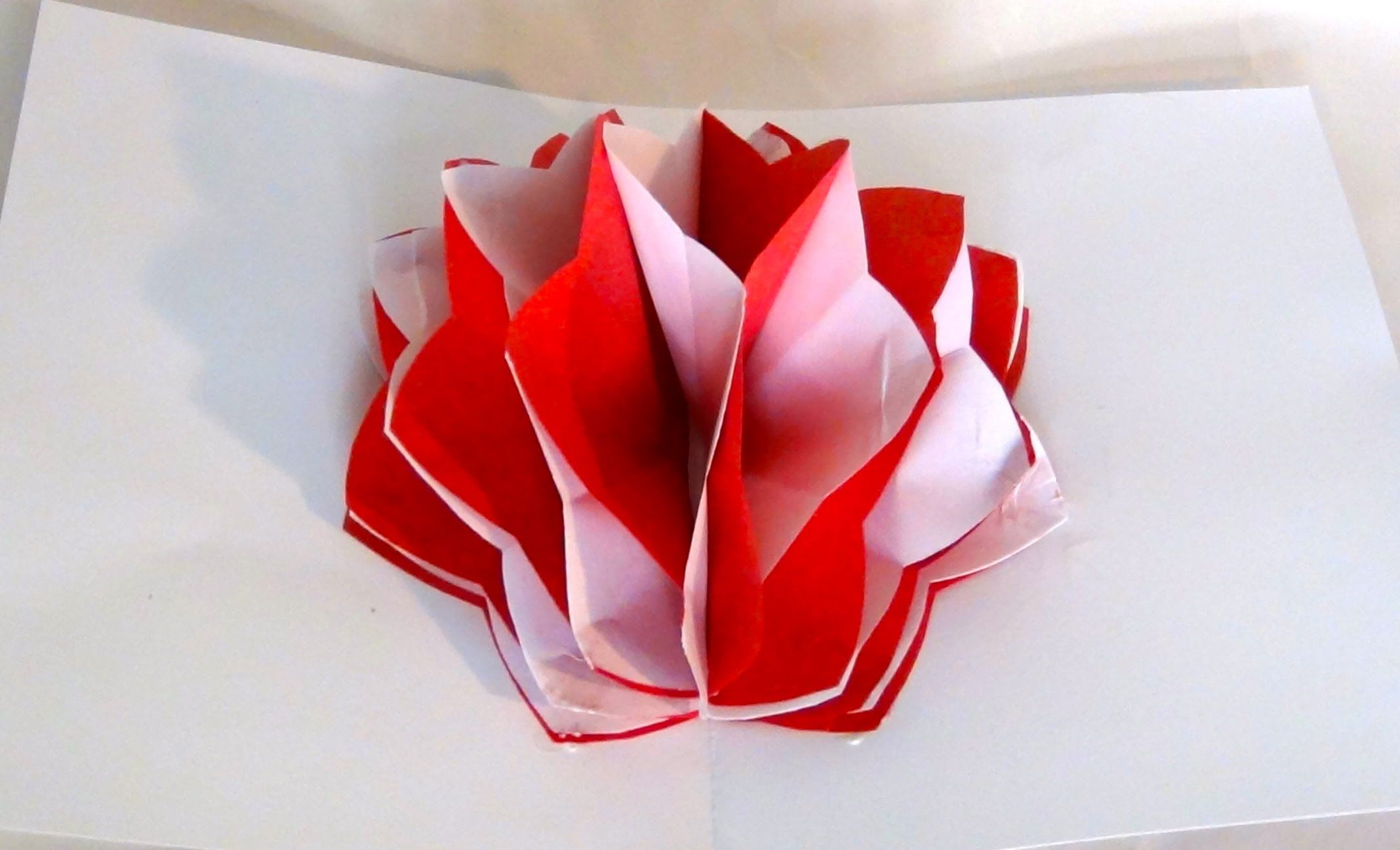 How To Make A Pop Up Paper Flower Youtube Cards 2 Pinterest