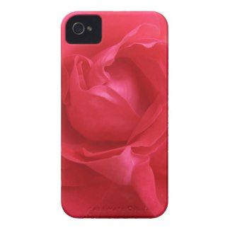 Rose Macro iPhone 4 Cases by Anstey