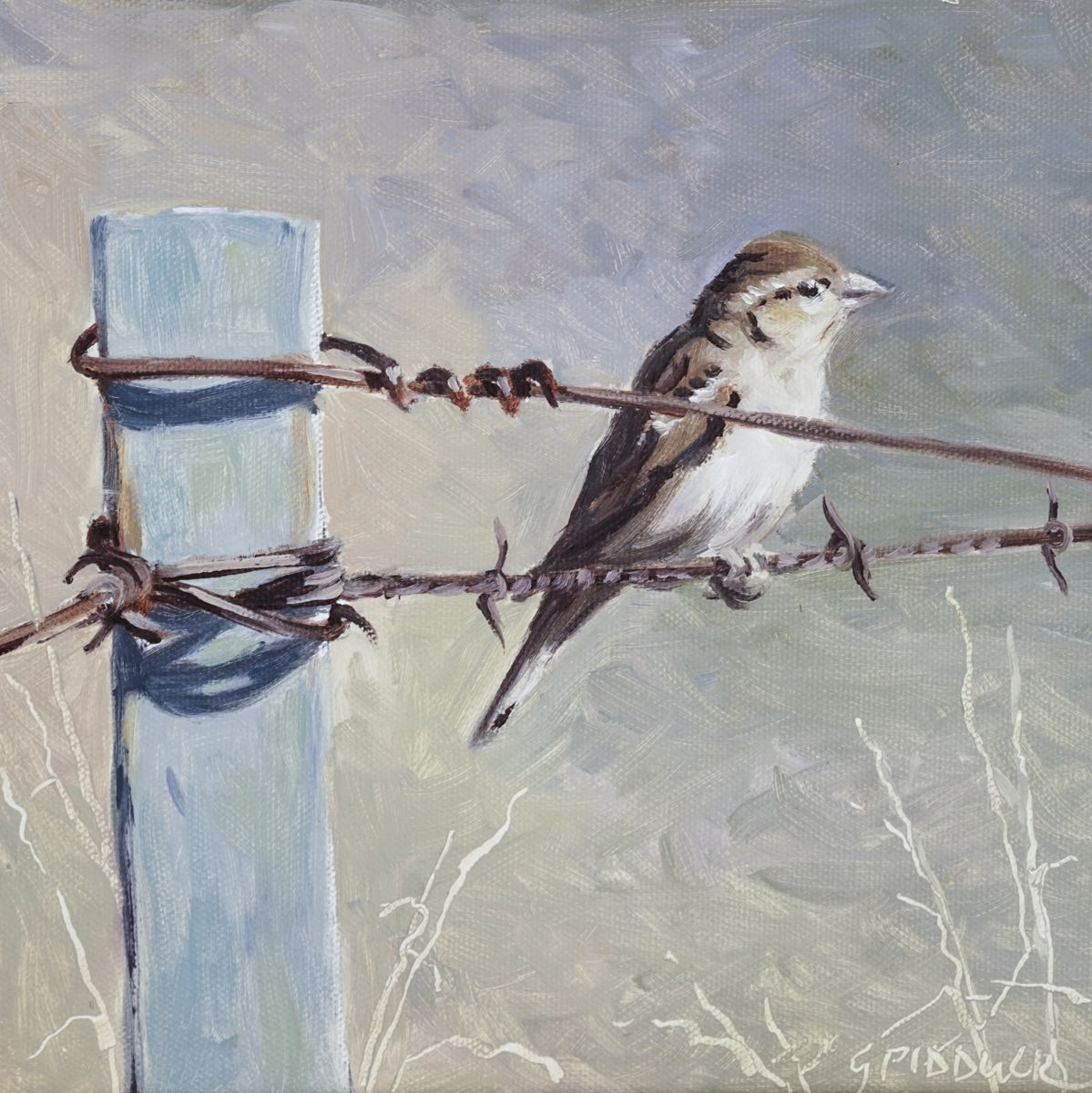 Bird on Wire\