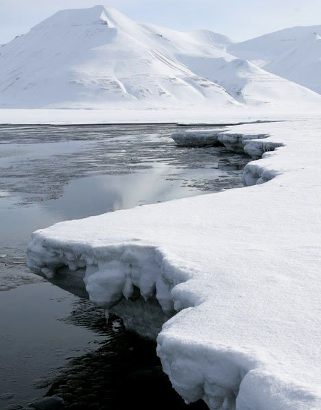 would like to go to the arctic