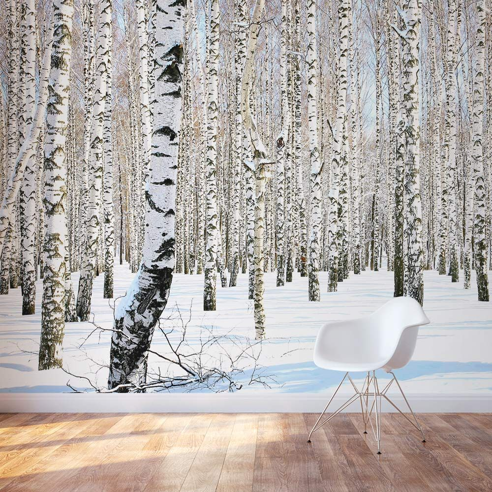 Winter Birch Trees Wall Mural Birch tree wall decal