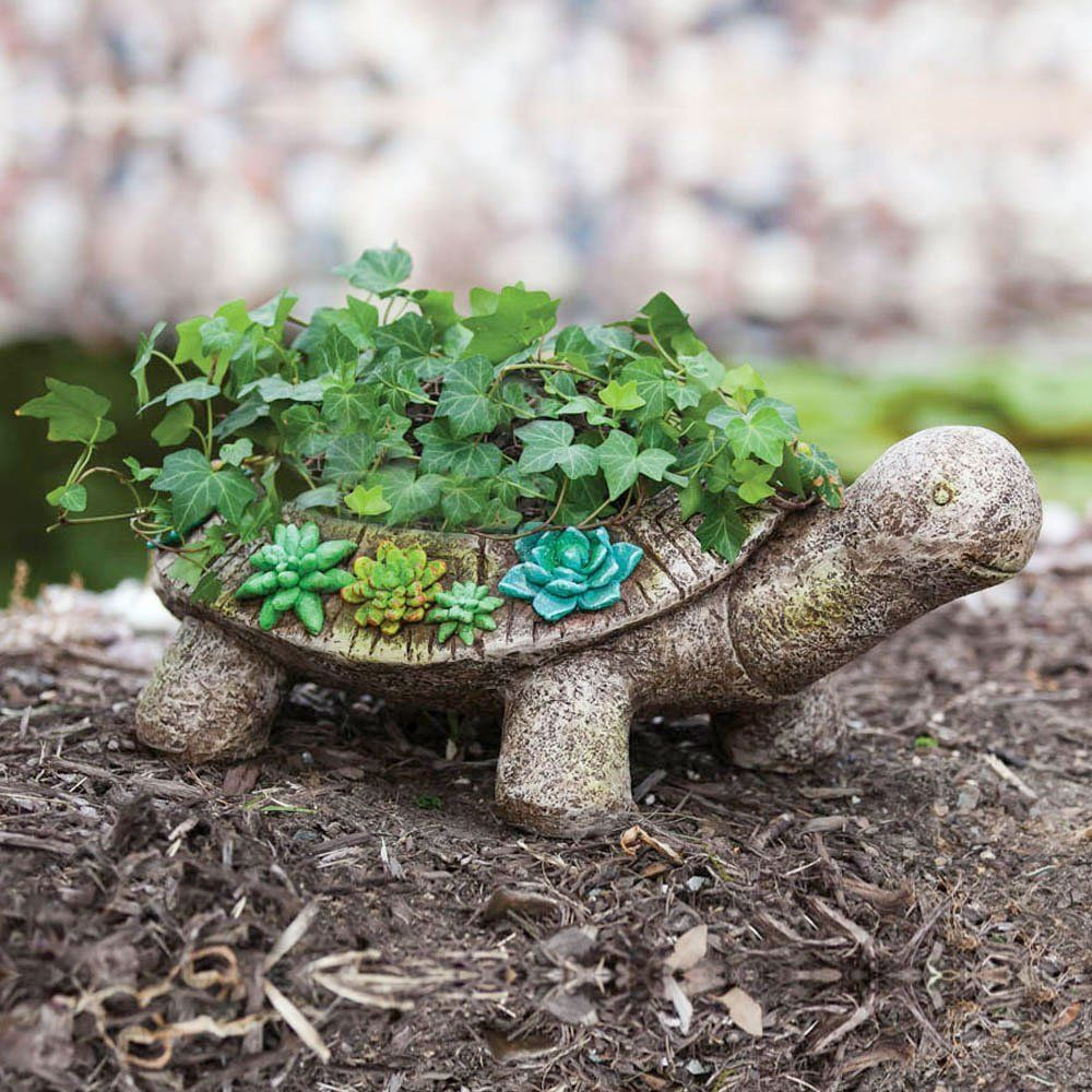 New Creative Succulent Garden Turtle Planter Unbelievable Product Right Here Planters