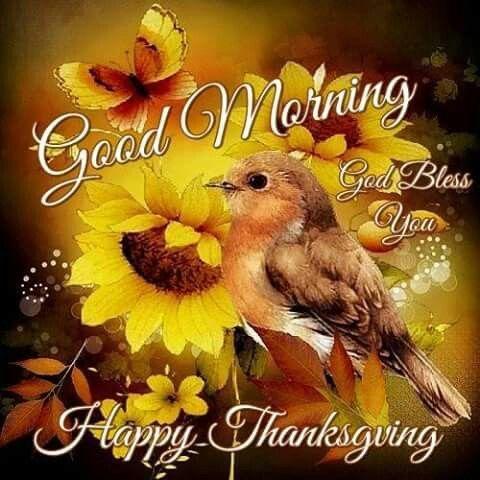 Good Morning Happy Thanksgiving Good Morning Good Morning