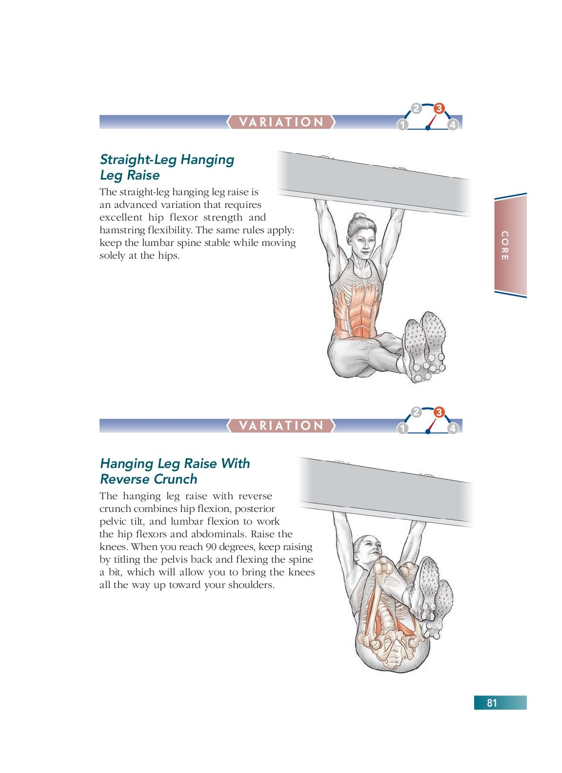Chapter 5 Core 81 Bodyweight Strength Training Anatomy Pinterest