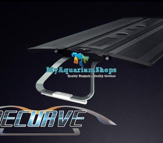 Home Myaquariumshop Online Store Malaysia Fresh And Marine Fish