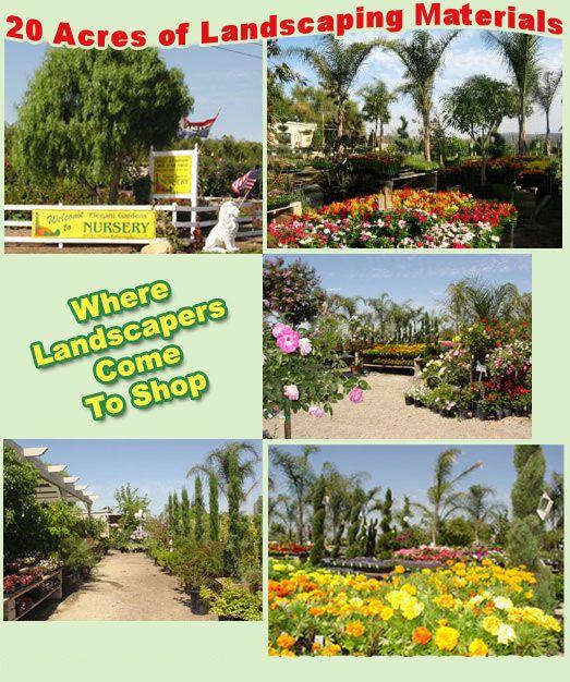 Elegant Gardens Nursery Moorpark Ca Welcome