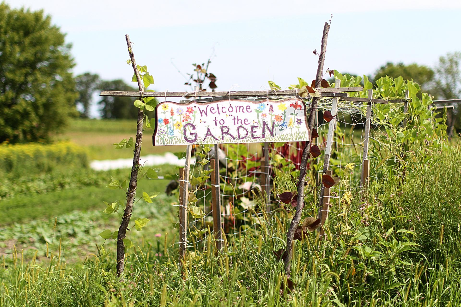 Concord, MA., 08/12/14, A pretty sign at First Root Farm. Laura Olive Sackton owns First Root Farm. Suzanne Kreiter/Globe staff (The Boston ...