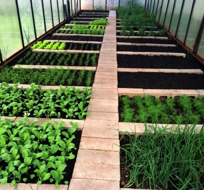 Photo of DIY garden beds: 43 interesting ideas for country design