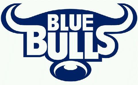 blue bulls image blue bulls pinterest bull images and rugby rh pinterest com blue bull logo beer blue bull logo vector