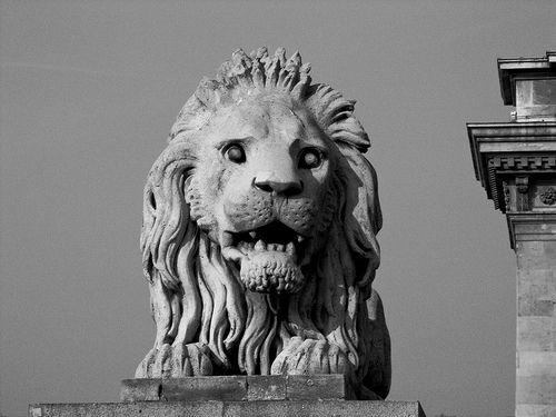 Lion, Chain Bridge, Budapest. PICT2406 LR Edit-2 by StevenC_in_NYC, via Flickr