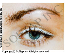 Amiea Permanent Makeup Training Course (With images