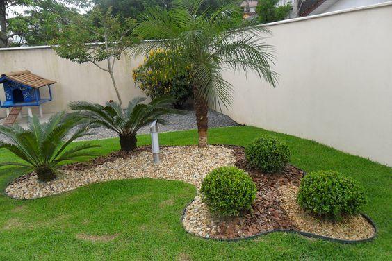 Tipos de plantas para dise ar tu jard n y paisajismo for Jardines verticales panama