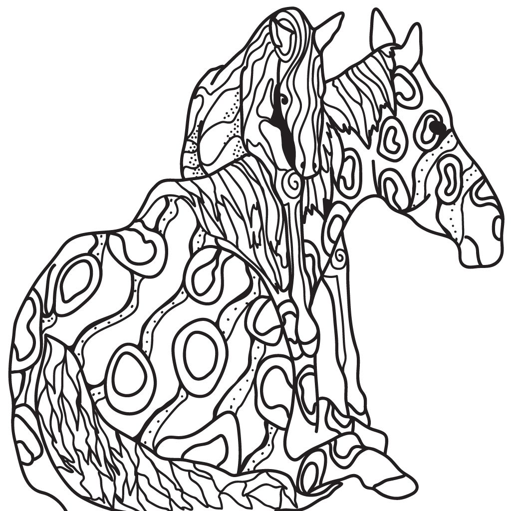 Horse Coloring Book for Adults Coloring Pages for Adults
