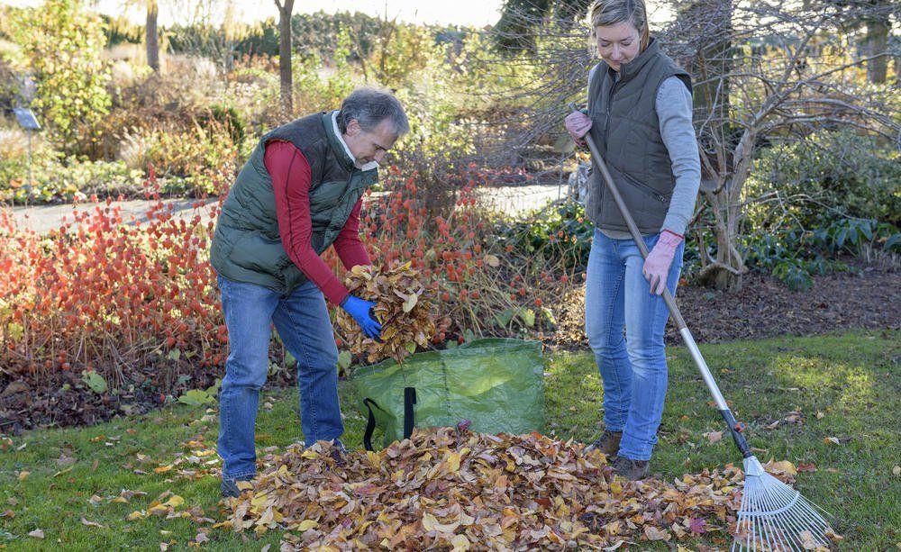 Laub Umweltfreundlich Entsorgen Die Besten Tipps Rasenpflege Laub Garten Planen