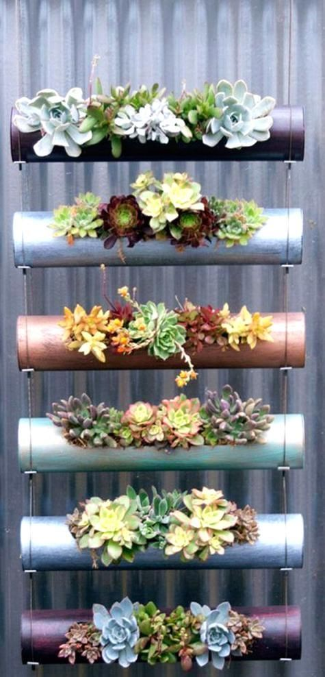 Photo of 30 Captivating Backyard Succulent Gardens You Can Easily DIY ! These succulent g