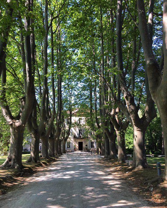 Le Château des Alpilles, SaintRémydeProvence, France