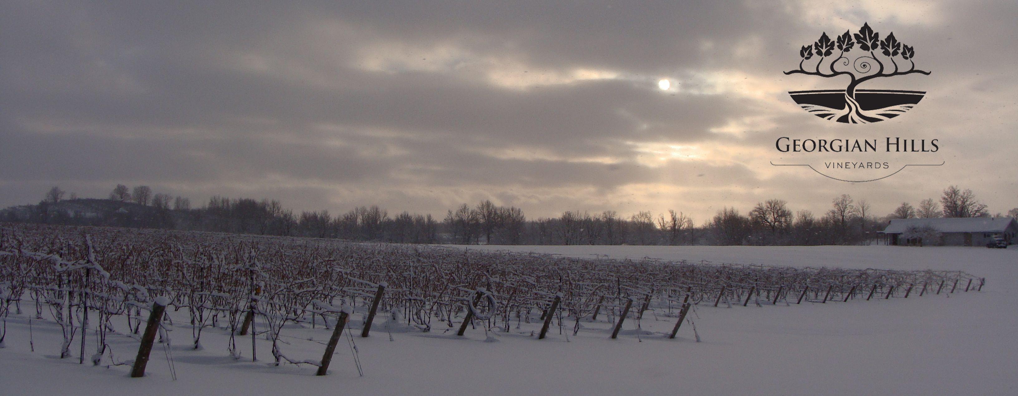 http://www.georgianhillsvineyards.ca/wp-content/uploads/2013/01/GHV-winter-landscape-with-logo.jpg