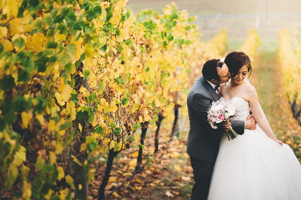 Pin On Weddings At Balgownie Estate