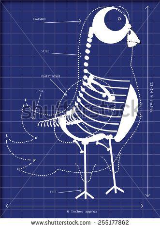 Cartoon blueprints of a pigeon, this is a funny cartoon illustration - new robot blueprint vector art