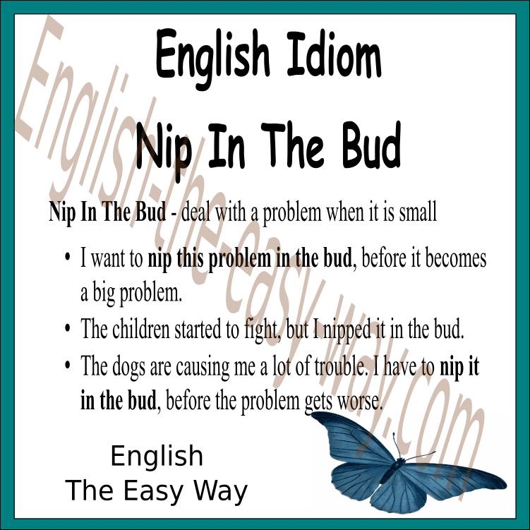 Nip something in the bud