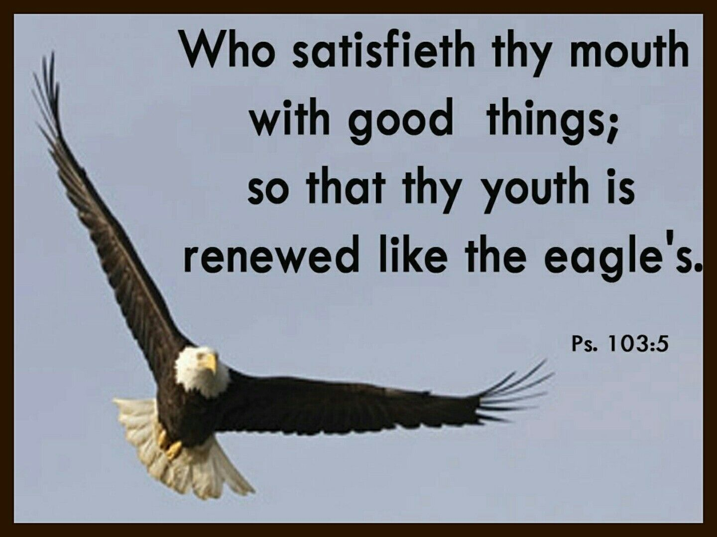 """RENEWED"""" Psalms  103:5 Who satisfieth thy mouth with good things ..."""