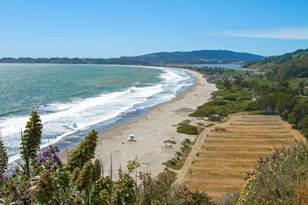 Visitors To Stinson Beach Experience The Pleasures Of This Quiet Community