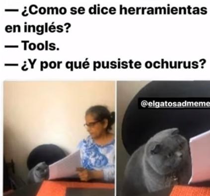 Memes Divertidos En Espanol En 2020 Memes Divertidos Memes Comicos Memes