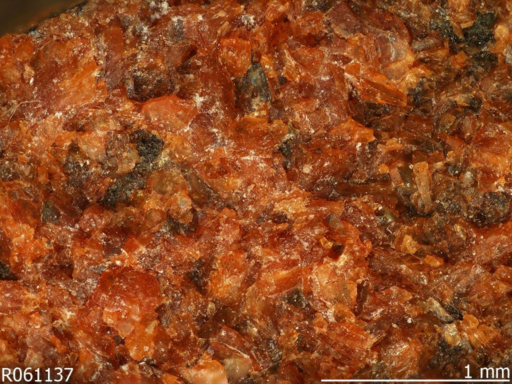 Heulandite-K, (K,Na,Ca)2-3Al3(Al,Si)2Si13O36 · 12H2O, Albero Bassi, Vicenza, Veneto, Italy. Coating of orange grains