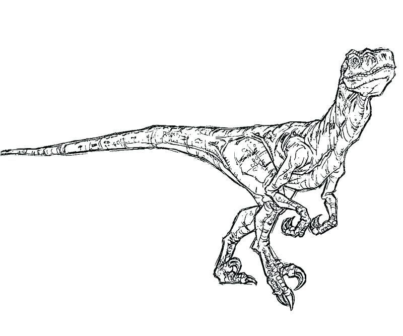 malvorlage dinosaurier euoplocephalus  coloring and