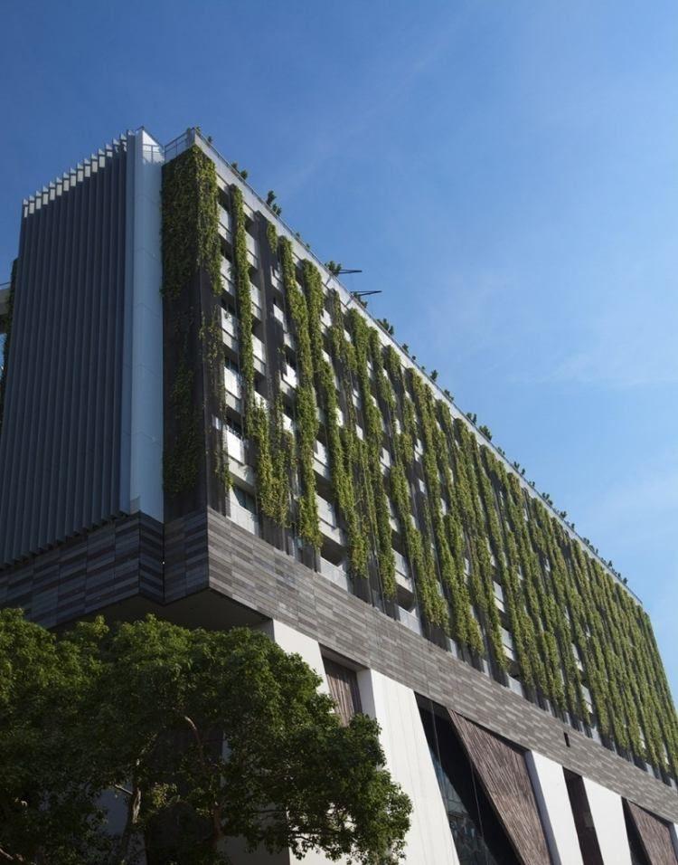 Mur v g tal int rieur en 80 id es pour la maison cologique moderne en ville immeuble et fa ades - Immeuble vegetal ...